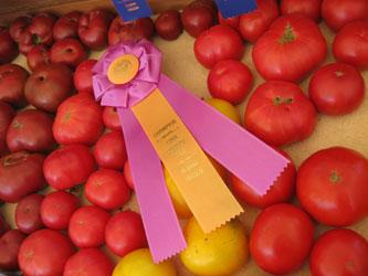 Award-Winning-Tomatoes