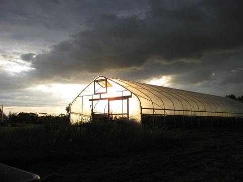 Greenhouse-Sun
